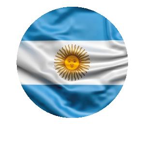 LANPUD BANDERAS ARGENTINA_Mesa de trabajo 1