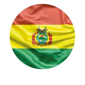 LANPUD BANDERAS BOLIVIA_Mesa de trabajo 1