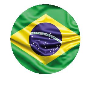 LANPUD BANDERAS BRASIL_Mesa de trabajo 1
