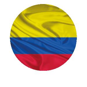 LANPUD BANDERAS COLOMBIA_Mesa de trabajo 1