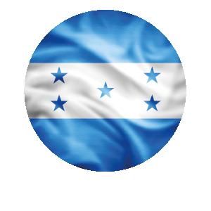 LANPUD BANDERAS HONDURAS_Mesa de trabajo 1
