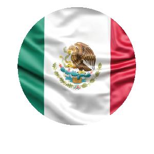 LANPUD BANDERAS MEXICO_Mesa de trabajo 1
