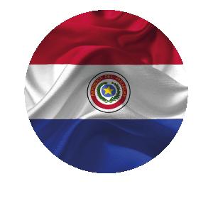 LANPUD BANDERAS PARAGUAY_Mesa de trabajo 1