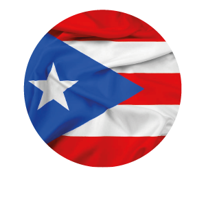 LANPUD BANDERAS PUERTO RICO_Mesa de trabajo 1