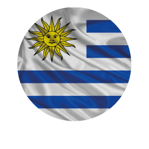 LANPUD BANDERAS URUGUAY_Mesa de trabajo 1